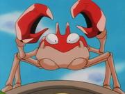 Ash Krabby