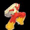 257Blaziken Pokémon HOME