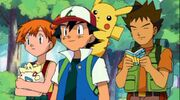 Ash & his Kanto Friends