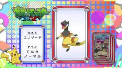 Pokémon Quiz XY066