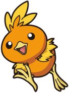 255Torchic AG anime 6