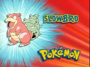 Pokemon TB017 It's Slowbro