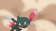 Team Flare Sneasel