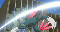Vicious Sneasel Slash