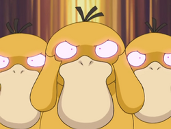 Image result for psyduck confusion