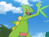 Categorygrass Type Anime Pokémon Pokémon Wiki Fandom Powered By