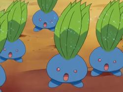 Oddish Stun Spore
