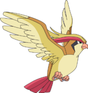018Pidgeot AG anime