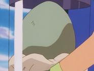 Ash Larvitar Egg