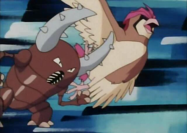 File:Samurai's Pinsir; Tackle.jpg