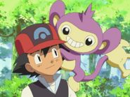 Ash and Aipom
