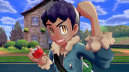 Pokemon Sword & Shield Hop in Game