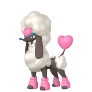 676Furfrou Heart Trim Pokémon HOME