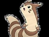 Furret (Pokémon)
