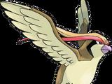 Pidgeot (Pokémon)