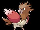 Spearow (Pokémon)
