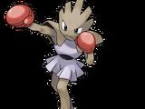 Hitmonchan (Pokémon)