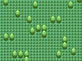 Grass Type Map