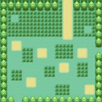 Route 14small