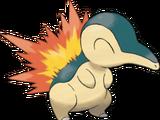 Afbeeldingen: Pokémon