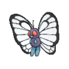 012Butterfree2