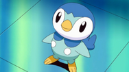 250px-Dawn Piplup