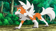 William Lycanroc