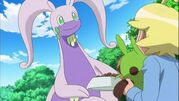 Goodra with a parent side