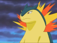 Miguel's Typhlosion