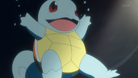 Blue Squirtle PO