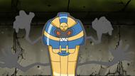 Cofagrigus anime