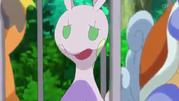 Pokémon-XY-Episódio-65-Wartotle-e-Raichu-Aparecem-Sliggoo-faz-o-Seu-Mellhor
