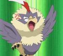 Rufflet (Pokémon)
