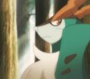 Cobalion (Pokémon)