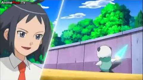 Video - Cheren Vs Ash Pokemon Best Wishes Season 2 Episode N