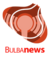 Bulbanews logo