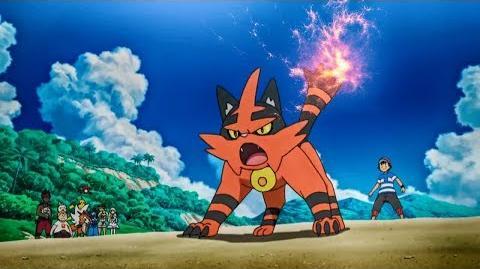 Ash's Litten Evolves Into Torracat Pokemon Sun & Moon Episode 63