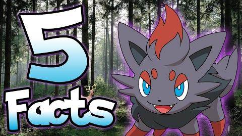 5 Facts About Zorua That You Probably Didn't Know! Pokemon Facts