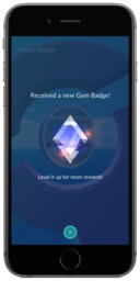 Gym Badge Screenshot
