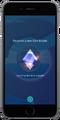 Gym Badge Screenshot.png