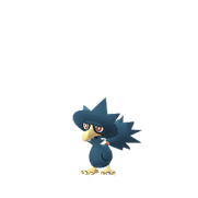 Murkrow female