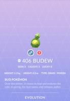 Budew Pokedex
