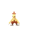Combusken female shiny.png