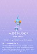 Mudkip Pokedex