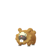 Bidoof female