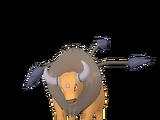 Region-exclusive Pokémon