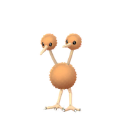 Doduo female