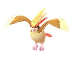 File:Pidgeot.png
