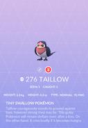 Taillow Pokedex