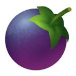 Unconfirmed Item Wepear Berry